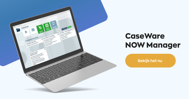 CaseWare NOW Manager